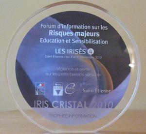 irises-4